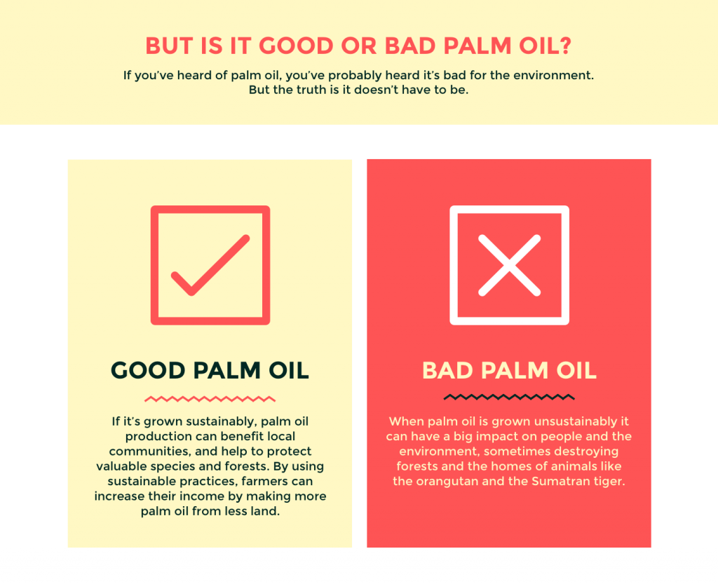 good-or-bad-palm-oil