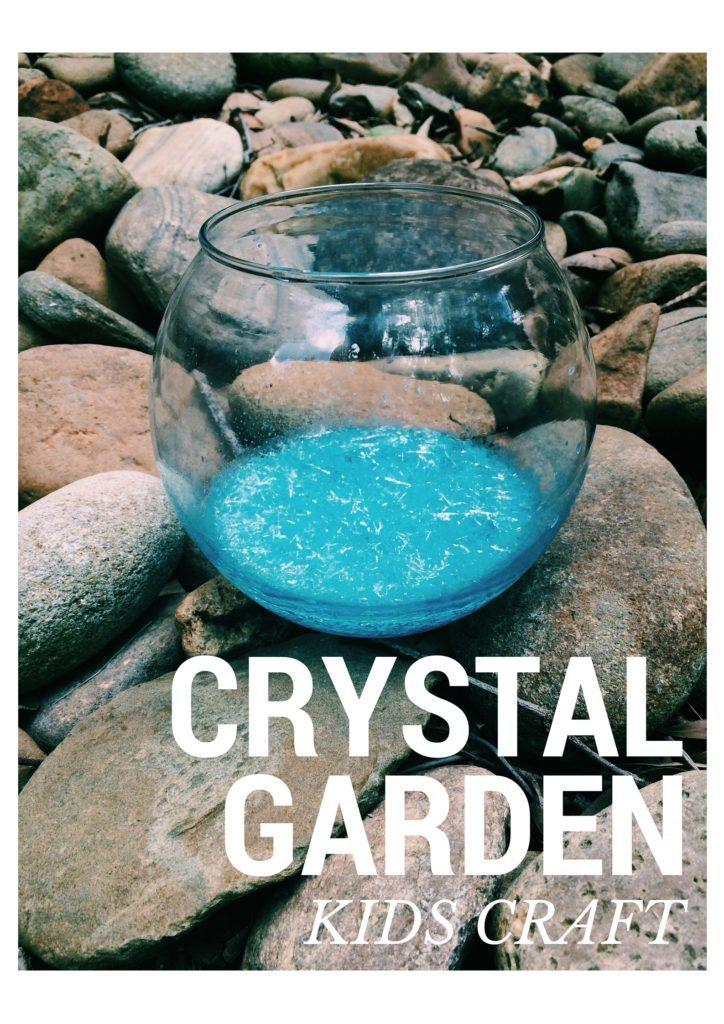 Kids Craft Crystal Garden