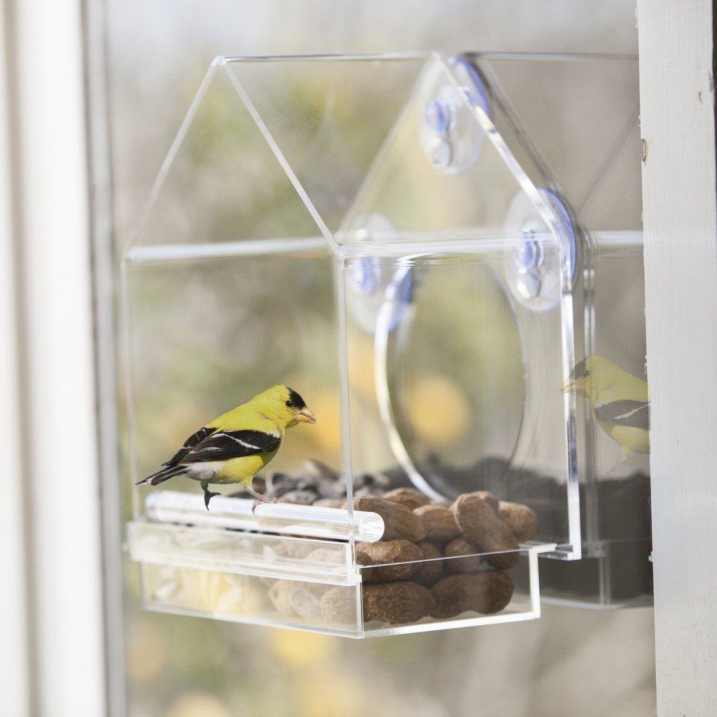 birds-i-view-feeder